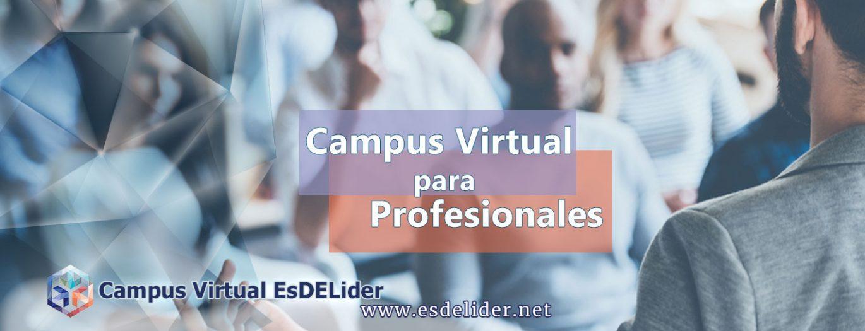 Alquiler de Aula Virtual para Profesionales