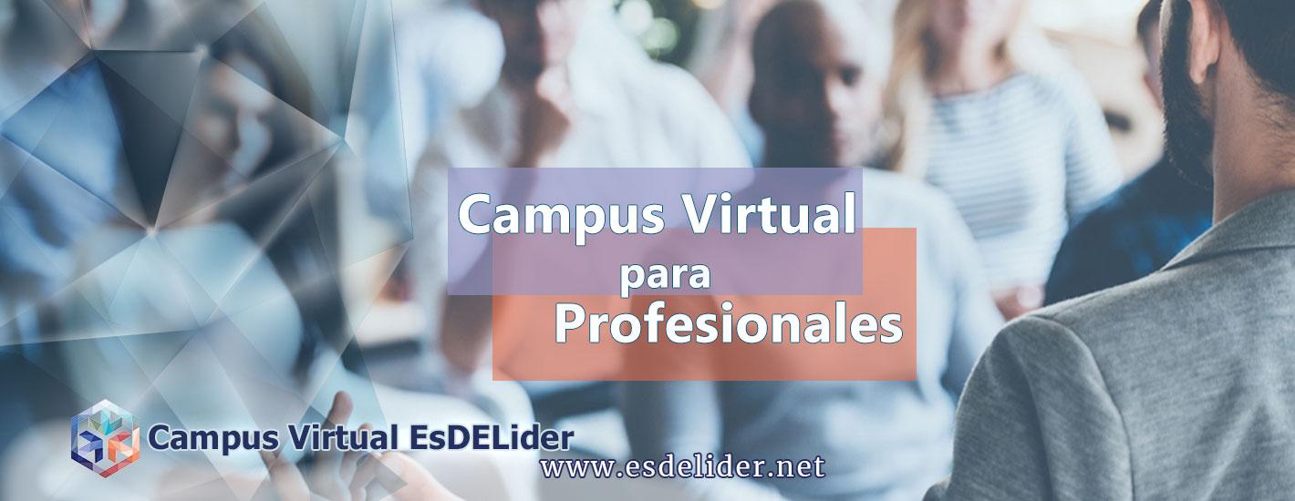 alquiler de aula virtual para profesionales campus virtual esdelider online